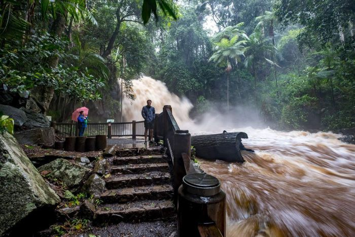 Flooded Curtis Falls on Mount Tamborine during a deluge on February 13, 2020.