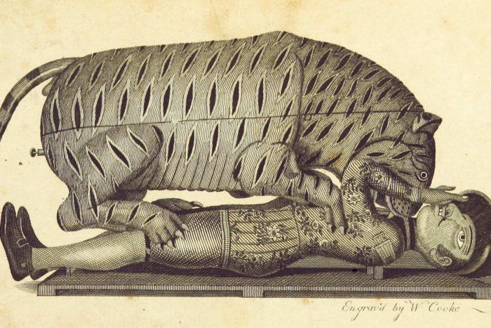 """An illustration of the automaton """"Tippoo's Tiger"""" from an 1800 book."""
