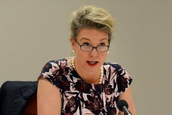 Senator Bridget McKenzie claims the guns used in crime are mostly imported into Australia