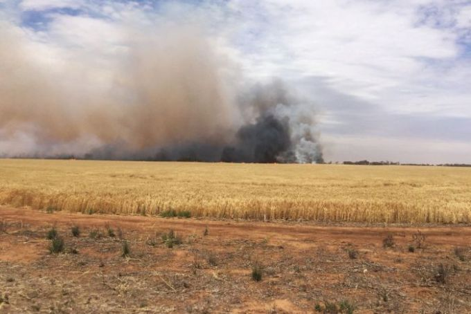 Fire burns in crops in the Mallala area north of Adelaide Nov 25 2015