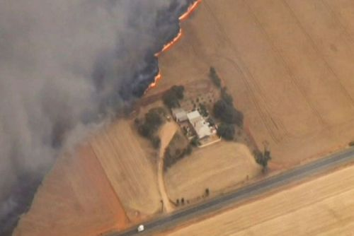 Fire burns near housing at Mallala