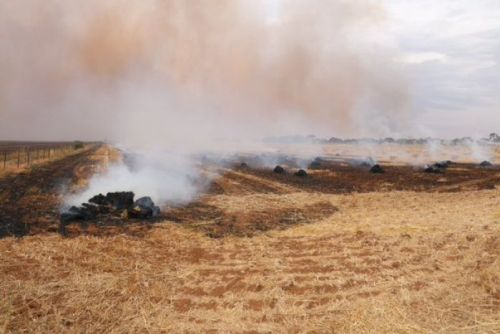 Hay bales on fire at Mallala