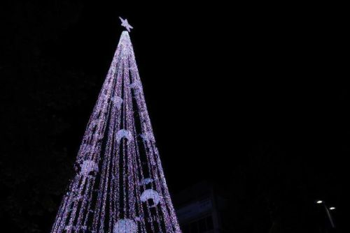 The record-breaking Christmas tree lights up for the first time in Civic.