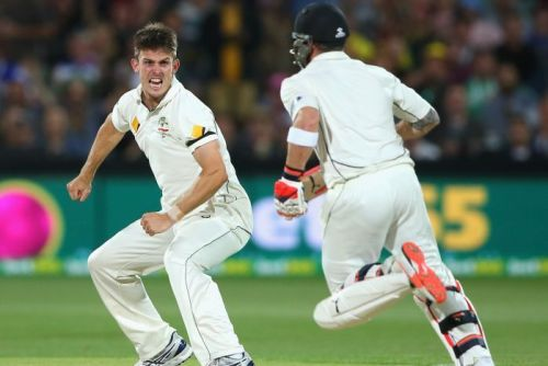 Mitch Marsh celebrates the wicket of Brendon McCullum