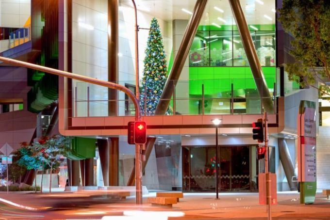 One of the many Christmas Trees Jane Dawes and her team will place throughout Brisbane.