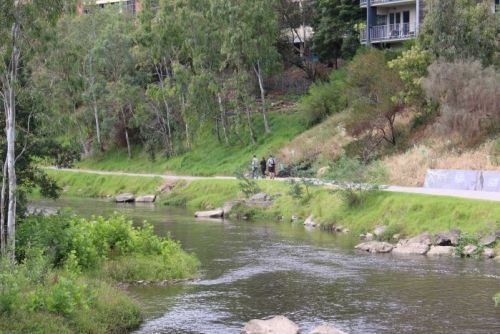 The walking track along the Yarra River in Abbotsford, in Melbourne's inner east.