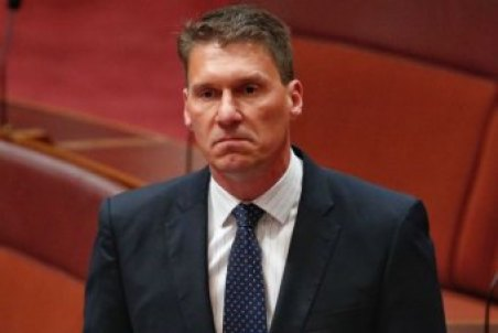 Senator Cory Bernardi in the Senate.