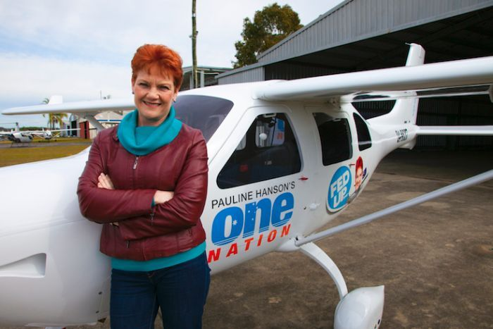 One Nation part leader Pauline Hanson stands in front of a light plane.
