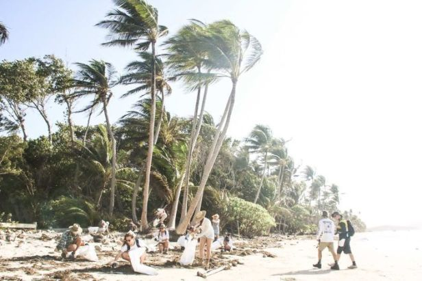 People with bags pick up rubbish on a beach with trees behind them