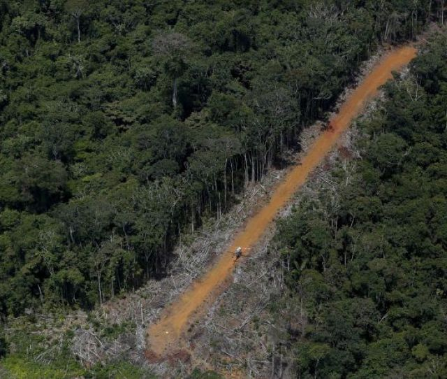 Aerial Shot Of A Dirt Track Lane Through The Amazon Used By Illegal Miners