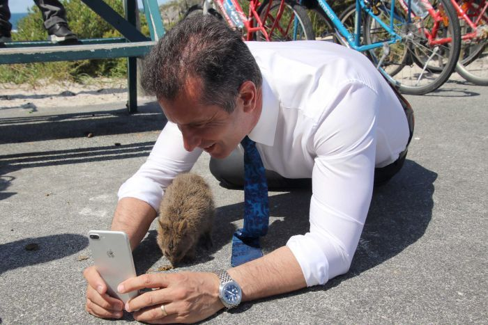 Minister Paul Papalia on the ground taking a selfie with a quokka on Rottnest Island.