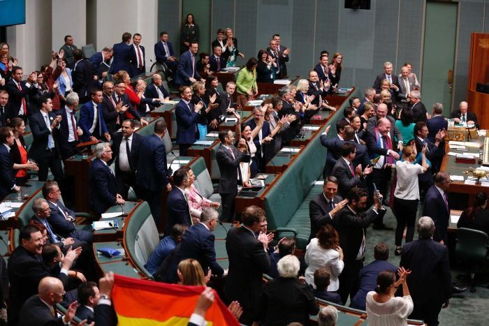 The House of Representatives celebrates the vote for same-sex marriage