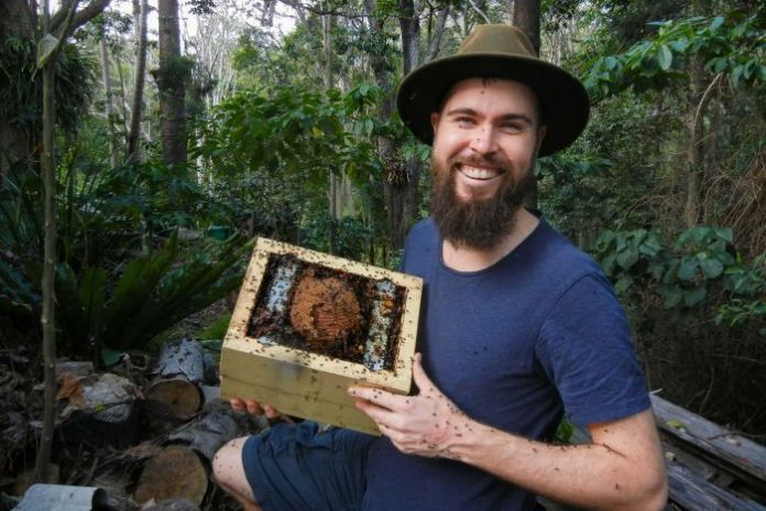 Bee researcher Dr Tobais Smith holds small home-made bee hive covered in native bees.