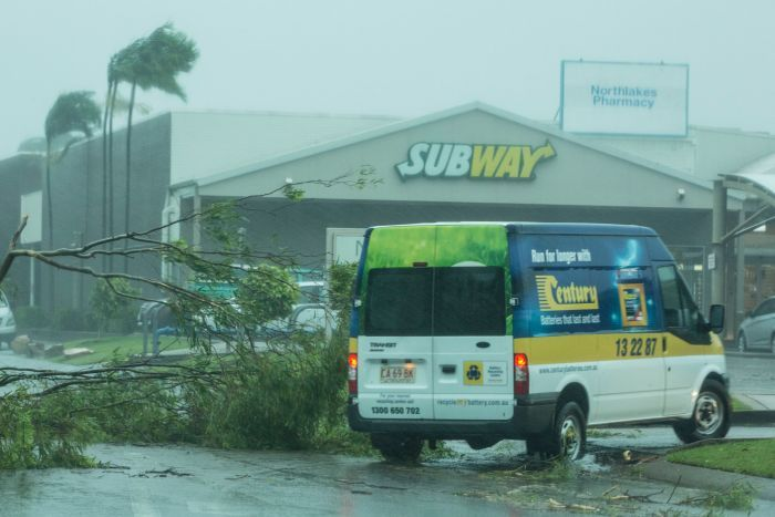 A van barely manoeuvrers around a toppled tree near a subway