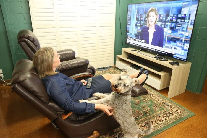 A woman sits in an armchair watching tv next to a dog