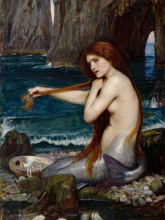 A picture of a mermaid brushing her hair.