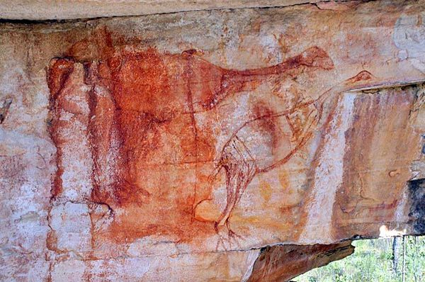 Australia's oldest painting? A red ochre depiction of two emu-like birds with their necks outstretched (User submitted: Ben Gunn)