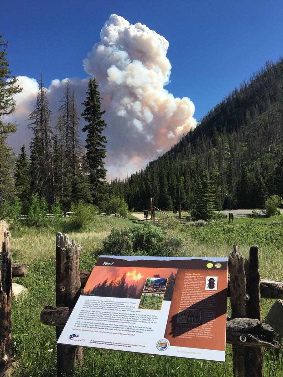 trail mountain fire courtesy ecso_1530123005478.jpg.jpg