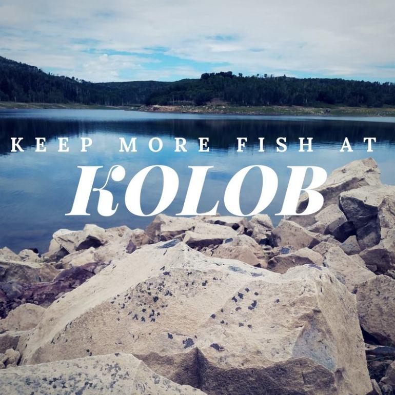 KOLOB RES_1535916131510.jpg.jpg