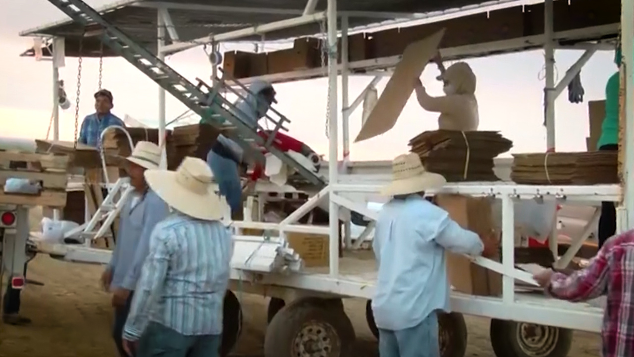 Immigrant workers 2