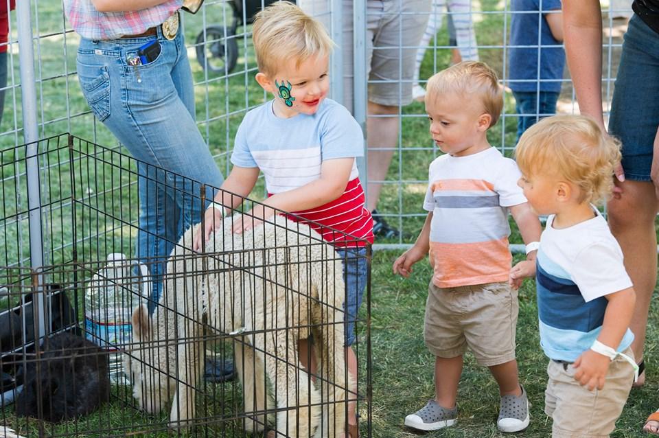 children enjoy Lehi Round Up Celebration Family Fun Day