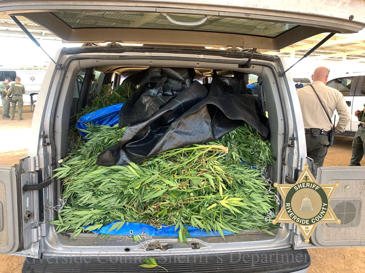 Bust: 5 9 tons of marijuana found in California | ABC 4