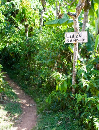 lulu's shop