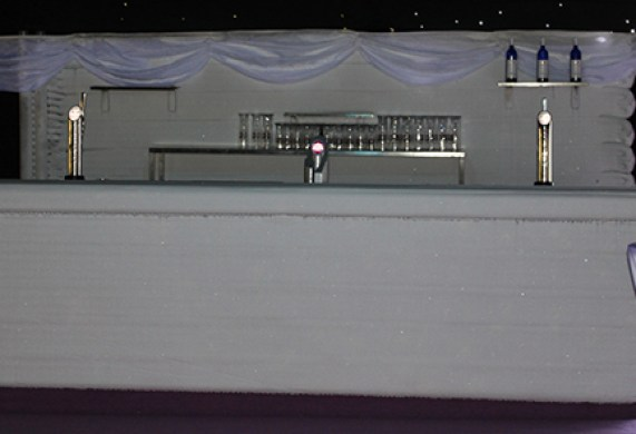 6_wedding-ice-bar