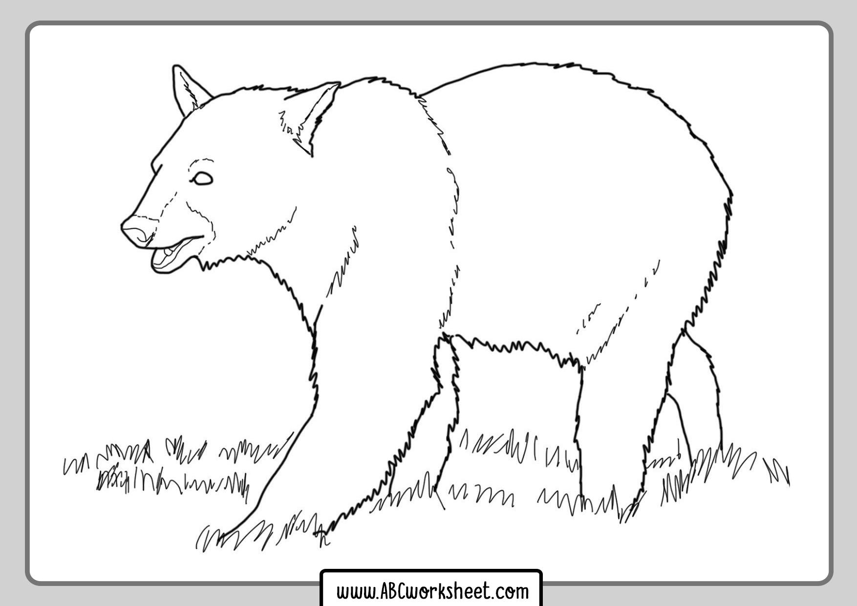 Grizzly Bears Printable Worksheet