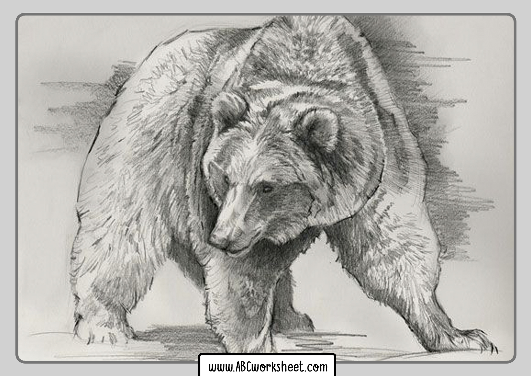 Grizzly Bear Coloring Sheets For Kids