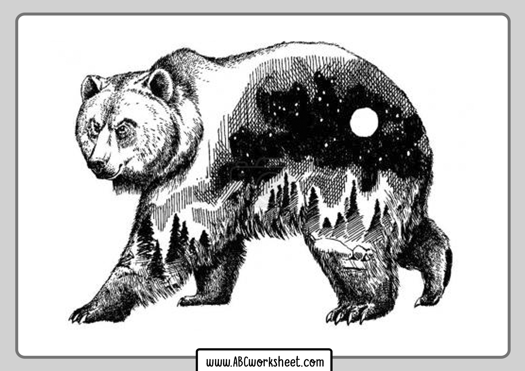 Illustration Grizzly Bear For Coloring