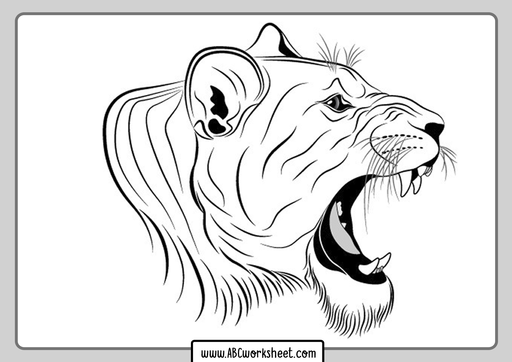 Lioness Coloring Pages