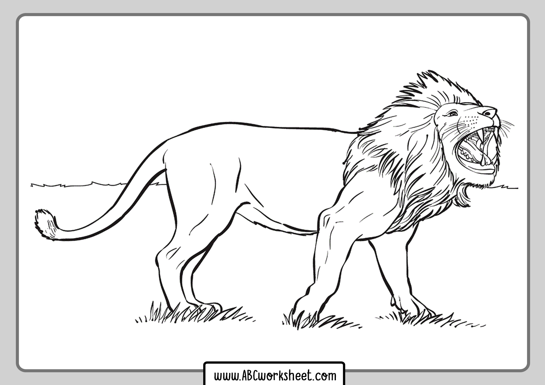 Printable Lion For Coloring