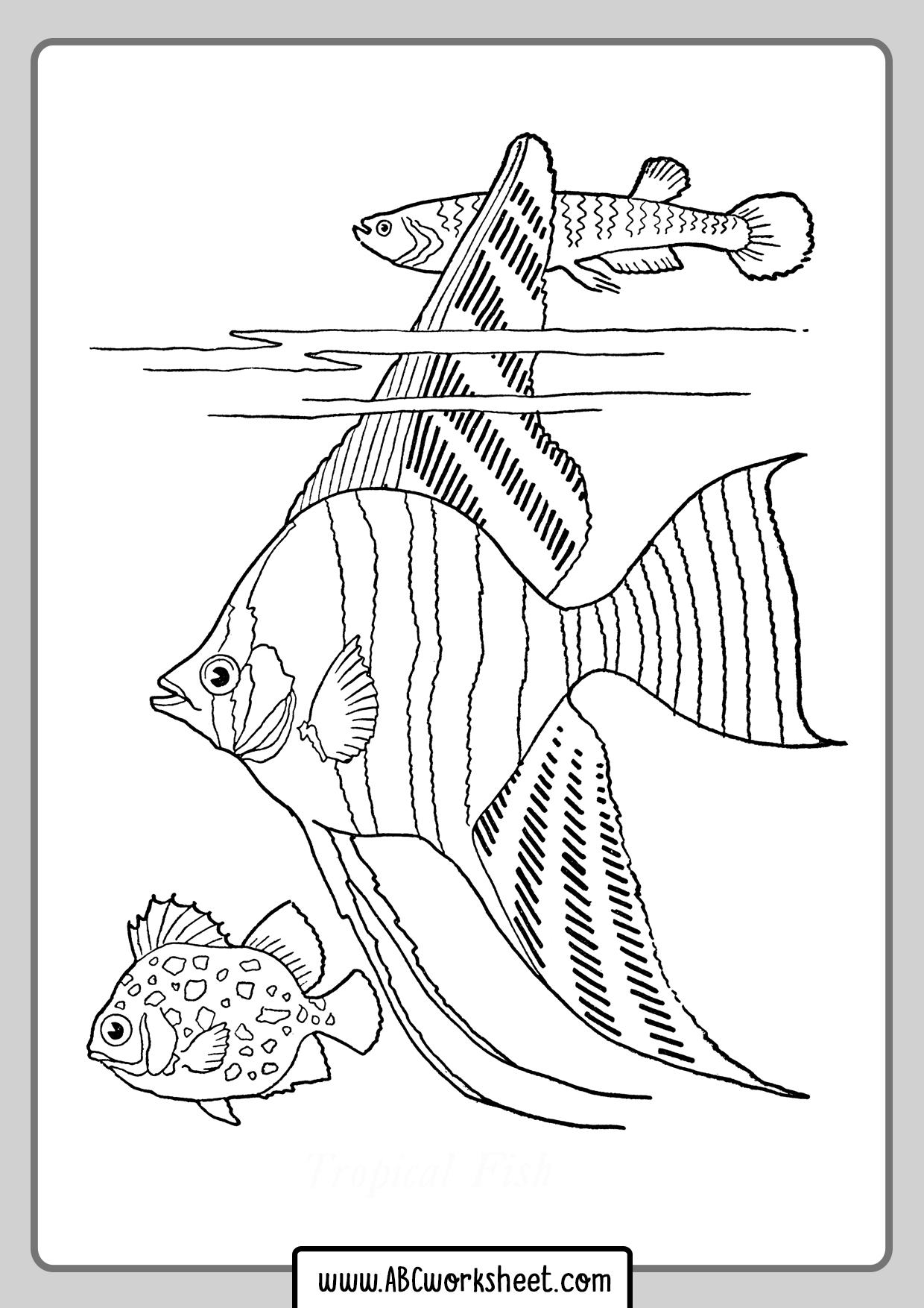 Aquarium Fish Coloring Page