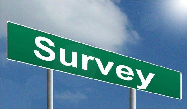 Online survey job