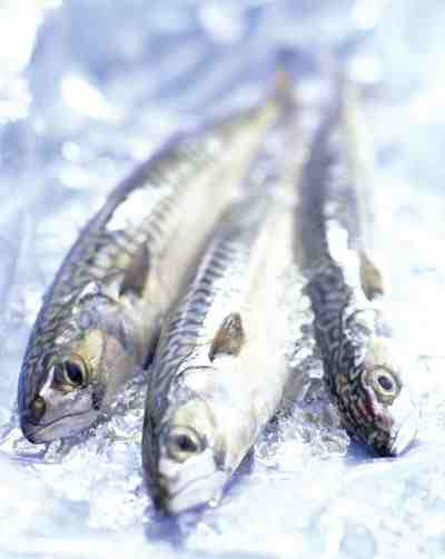 126-omega-3-fish-benefits.jpg