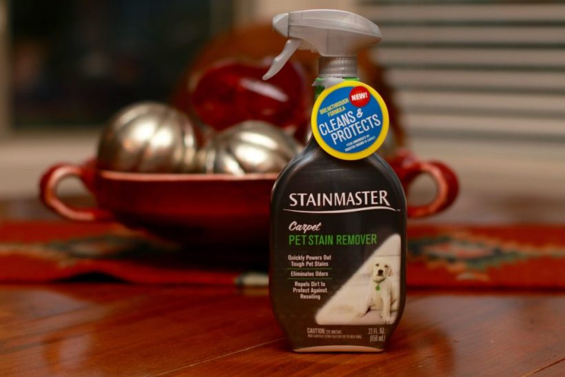 Stainmaster Pet Stain Carpet Cleaner