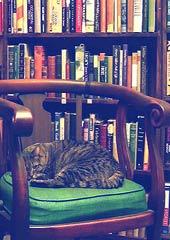 Madeline, from the Kelmscott Bookshop