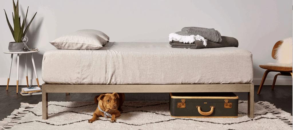 minimalist-sturdy-bed-frame-gold