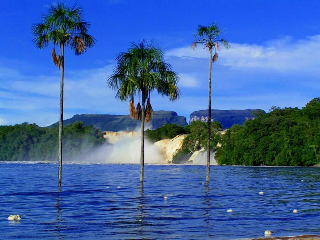 Canaima Tour