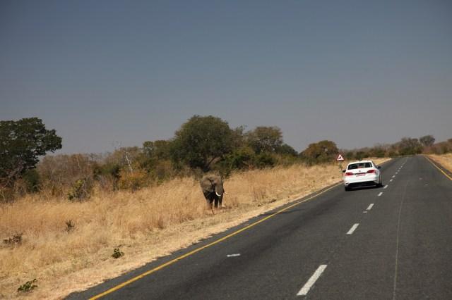 Wüstenblues Mountainbike-Tour durch das südliche Afrika
