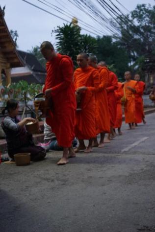 Mönche, Laos, Mekong Pearl, Luang Prabang, Goldenes Dreieck, Lernidee-Erlebnisreisen