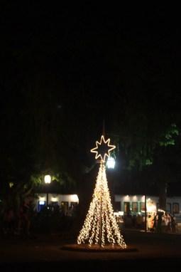 Weihnachtsbaum in Paraty