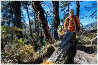 Langsam auf 3500m werden die Wälder karger.