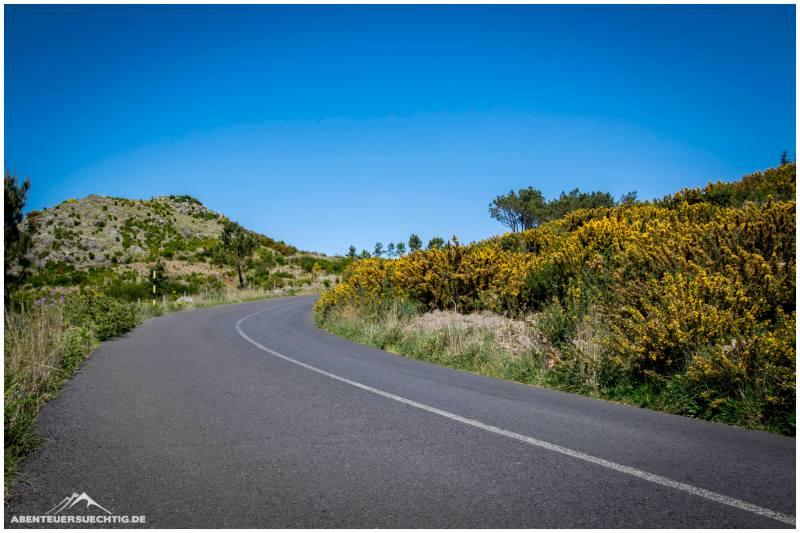 Wundervolle Landschaft oben auf Madeira
