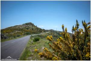 Straßen ziehen sich durch die traumhafte Landschaft von Madeira