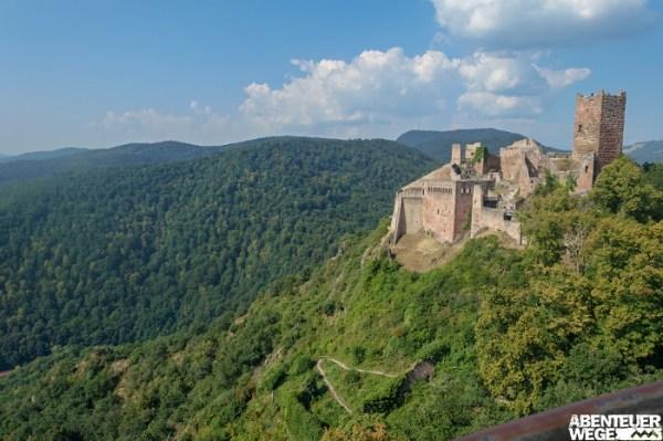 Die Hügel des Elsass sind gespickt mit mittelalterlichen Burgruinen