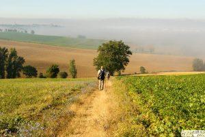 Wandern auf dem Jakobsweg 2019