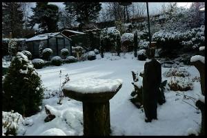 Snow March 13th.jpg