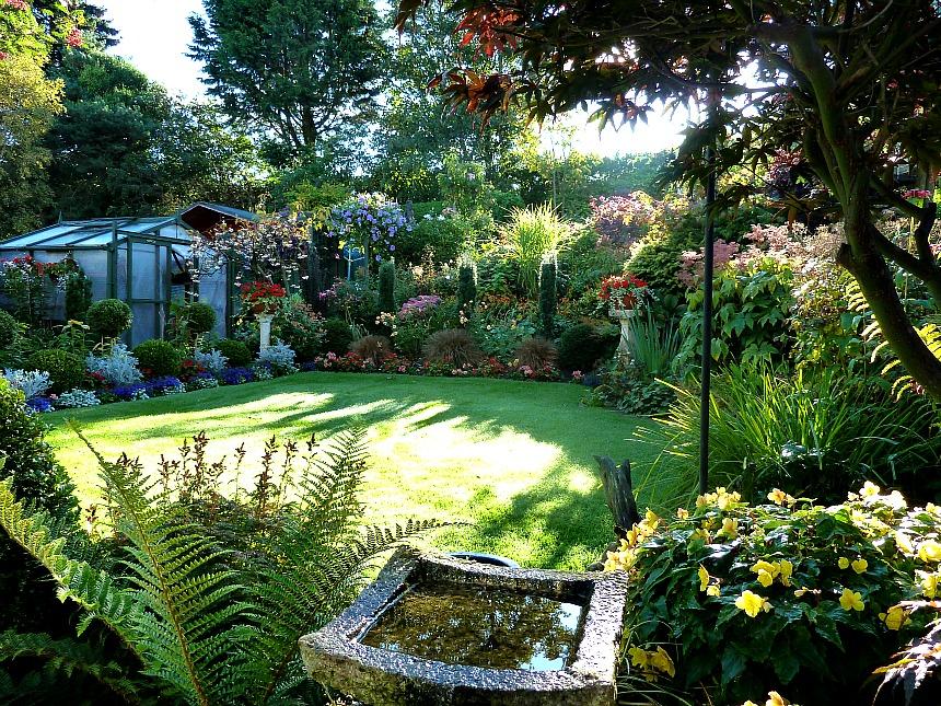 Back garden September 25th (10)